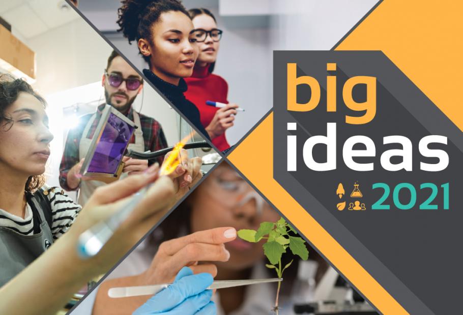 big ideas 2021